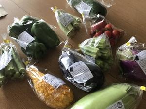 野菜天国さんの【農薬・肥料不使用】季節の旬野菜セット口コミ・レビュー1
