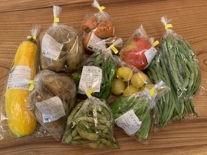 匿名さんの【農薬・肥料不使用】季節の旬野菜セット口コミ・レビュー1