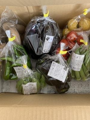 かのあさんの【農薬・肥料不使用】季節の旬野菜セット口コミ・レビュー1