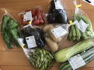 ももさんの【農薬・肥料不使用】季節の旬野菜セット口コミ・レビュー1
