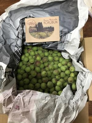 レーヌママさんの自然栽培の小梅 2kg口コミ・レビュー1