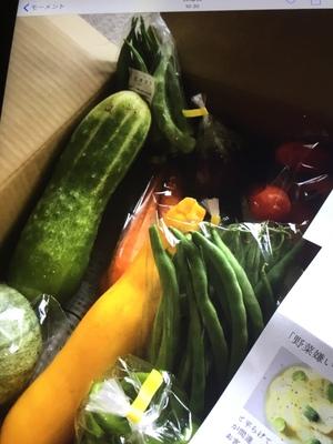 チューリップさんの【農薬・肥料不使用】季節の旬野菜セット口コミ・レビュー2