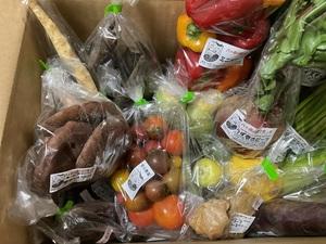 nikoさんのシードマイスターが作る無農薬季節の変わり野菜セット 口コミ・レビュー1