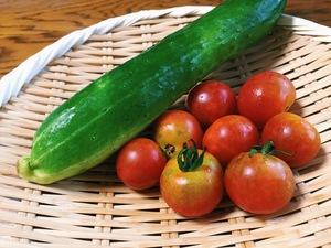 こっさんさんの【農薬・肥料不使用】季節の旬野菜セット口コミ・レビュー6