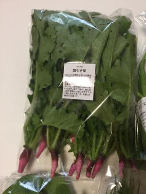 にゃー隊長さんの【農薬・肥料不使用】季節の旬野菜セット口コミ・レビュー3