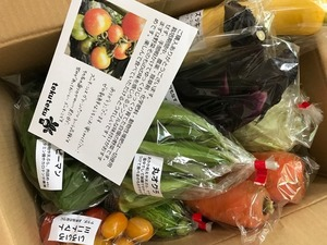 shokoさんの無農薬 露地野菜セット口コミ・レビュー1
