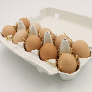 純粋烏骨鶏の卵 (10個)