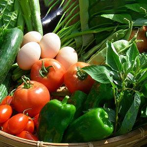 卵ソムリエの放し飼い有精卵10個と無農薬野菜のセット (野菜5種)