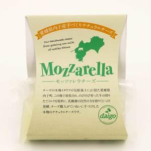 モッツァレラチーズ (100g)