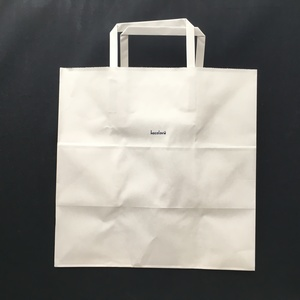 紙袋 (1枚)