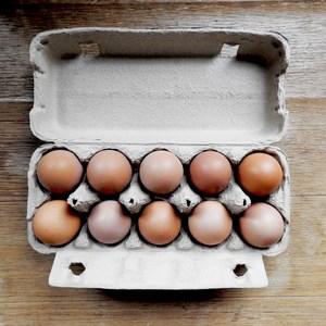 卵 [平飼い鶏・有精卵] (10個パック)