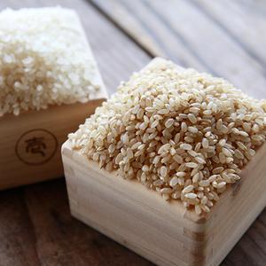 森のくまさん(うるち米) 玄米 30年度産[無農薬・無化学肥料・有機JAS認定] (2kg)