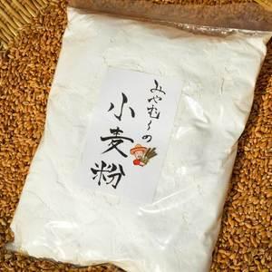 みやむ〜の小麦粉 (1kg )