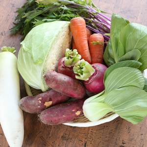 オーガニックの旬野菜セット (7~8種類)