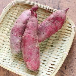 さつまいも 紅あずま 農薬不使用・化学肥料不使用 有機JAS (1kg)