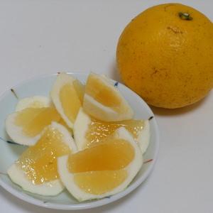 ニューサマーオレンジ 無農薬・無化学肥料・無除草剤 (5kg)