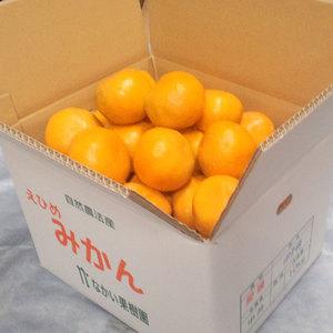 いよかん 無農薬・無化学肥料・無除草剤 (MLサイズ混合 5kg(箱重量込み))