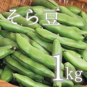 【5月限定!旬の味!無農薬・無肥料】そら豆 (1kg  さや付)
