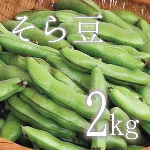 【5月限定!旬の味!無農薬・無肥料】そら豆 (2kg  さや付)