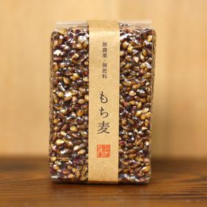 もち麦(ダイシモチ)【無農薬・無肥料】 (1合)