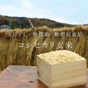 コシヒカリ玄米 30年度産 【無農薬・無肥料・天日干し】 (1kg)