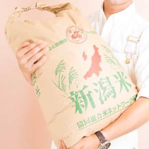 コシヒカリ 玄米 令和元年(31年度産) [有機栽培 農薬化学肥料不使用] (玄米20kg)