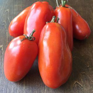 調理用 樹上完熟トマト サン マルツァーノ 無農薬 無化学肥料 (500g)