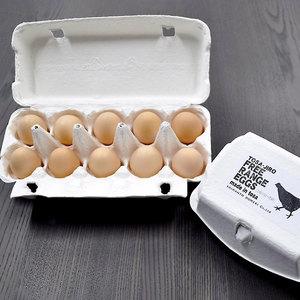 土佐ジローのたまご【放飼い有精卵】 (初卵10個)