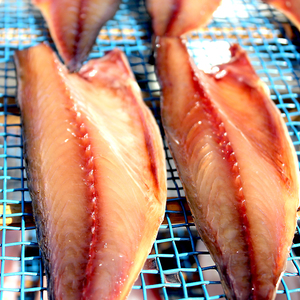 高知県産 鯖味醂干し (10枚)