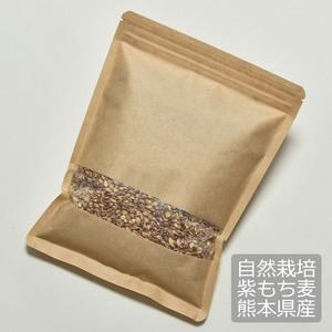 自然栽培紫もち麦 (500g)