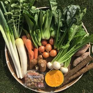 自然栽培(無農薬・無肥料の自然農法)野菜セット (XL10~14品目)