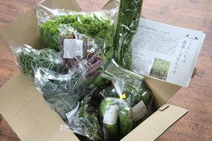無農薬の野菜セット