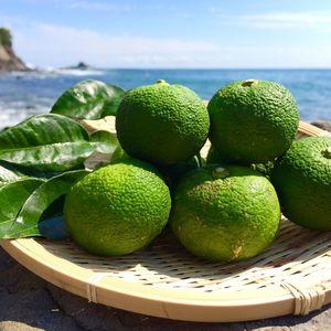 晩夏の青柚子 無農薬・無化学肥料 (10個)
