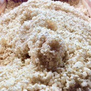 米麹 (天然菌 無農薬 無肥料ヒノヒカリ米) 生麹 (500g)